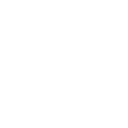 Mobile Lifestyle