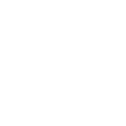 Zydus Group